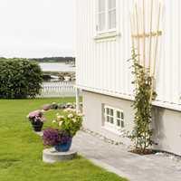 Hvitfargen går godt til å vise frem hagens blomster, men en kritthvit grunnmur mot en mørkere hvitfarge over, kan gjøre at selve huset ser skittent ut. Her fungerer en lysegrå grunnmur like godt.