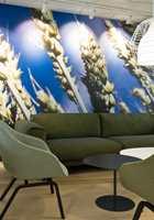 <b>HIMMELBLÅTT: </b>I 5. etasje er det bilde av et kornaks med blå himmel. Her går fargene i mer grønne og hvite toner. – Vi har ikke brukt trendfager, men mer bondefarger inspirert av bildene.