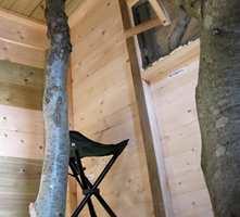 Trehytte med fire gjennomgående trestammer, som går gjennom både gulv og tak.