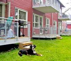 Bo Klok: I EKSPRESSFART: De standardiserte Bo Klok-husene monteres på bare to dager, mens ferdiggjøringen inne og ute tar to uker.