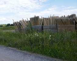 <b>STAUR:</b> Langs en bygdevei på Toten strakte kasser med staur seg mot blå himmel.