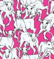 Marimekkos kuer på rosa bakgrunn er kuult!