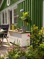 <b>GRØNT:</b> Med både grønne vegg og planter blir utelivet frodig. Huset er malt i fargen Granbarr 091 fra Beckers.