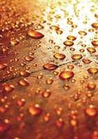 <b>DRÅPETESTEN:</b> Hvis vanndråpene perler seg fint på benkeplaten, kan du utsette vedlikeholdet litt til. Om de flyter ut og trekker inn i treverket, må du finne fram oljen. (Foto: Osmo)