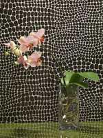 Paraiso: Strukturen gir et tredimensjonalt inntrykk.