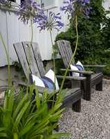 <b>KRYDDER:</b> Det hvite huset er omgitt av en stor grønn hage med grus- og helleganger. De blå innslagene er krydderet som løfter helheten.