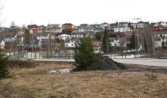 <b>NABOLAGET:</b> I et gråhvitt nabolag kan det friske opp med noen kontraster.
