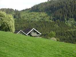 <b>NATUR:</b> Et grønt hus gjemmer seg i helgrønn natur. De lyse vindskiene skaper kontrast mot omgivelsene og sier «hei, hei!!»