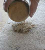 <b>PULVER TREKKER OPP:</b> Liberon «Flekkfjerningspulver» fra Alanor absorberer rensemiddel og rester av flekken på teppet.