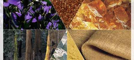 Linoleumen er 150 år. Nesten symbolsk for det bærekraftige materialet er at den nye kolleksjonen inneholder spor av både fortid og fremtid. Gulvmaterialet er godt egnet for alle tørre rom i boligen - og stadig flere velger det i stuen.