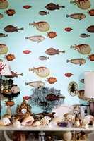 Klovnefiskene har ser eiendommelige og naive ut, og er plassert på en dempet nøytral bakgrunn eller mot et lyst koboltblått, sort eller dyp blått bakteppe.