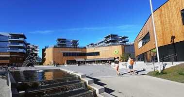 Birgitte Skjerve tror vi vil se mye tre i arkitekturen fremover. På Fornebu S er det valgt stående trekledning i beiset gran på fasaden. Bygget er tegnet av AMB Arkitekter AS. Foto: AMB Arkitekter AS