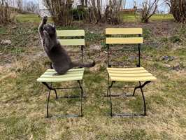Med Quick Bengalack får du enkelt fornyet gamle møbler.