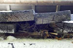 <b>SJEKK:</b> Uffda, her er det slurvet. Tørr og sprukken endeved gir godt krypinn for fukt. (Foto: Mari Rosenberg/ifi.no)