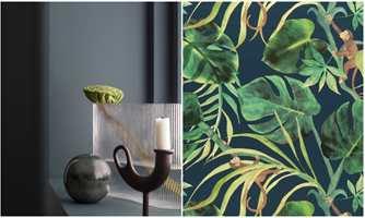 <b>TROPISK:</b> Rommet med mørkeblå vegger (Butinox) blir forvandlet til en tropisk oase når veggfargen følges opp med frodige, grønne planter på mørk blå bunn (Borge).
