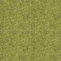 Grønt gress hele året i vinyl