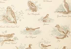 Sirlige og tydelige tegninger av fugler i sitt naturlige element. Fås som tapet og tekstil, fra Green Apple/Lewis & Wood.