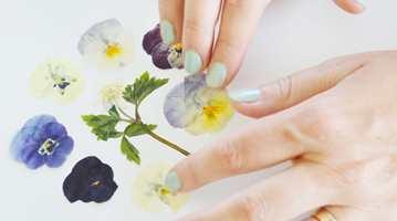 Designsjef Hanna Wendelbo-Hansson i Boråstapeter setter blomster på tapetet! Selv har hun fått «dilla» på noe nytt - herbarium - etter at mormoren inspirerte til den nye tapetkolleksjonen «Garden Party».