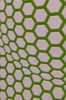 Colour Riot: 3D-mønstrede tapeter.