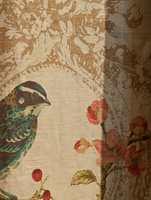 <br/><a href='https://www.ifi.no//fuglene-flyr-fortsatt-veggimellom'>Klikk her for å åpne artikkelen: Fuglene flyr fortsatt veggimellom</a>