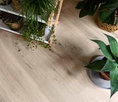 Mange ulike treslag benyttes til parkett, og gulvets hardhet bestemmes av hardheten hos det aktuelle treslaget. Foto: Tarkett
