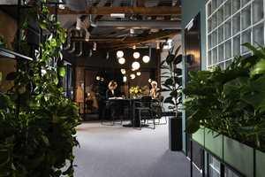 <b>FRODIG:</b> Det er grønt, frodig, lunt og alt annet enn hva man forbinder med stramme, hvite og sterile kontorlandskap. Ramsøskar Interiørarkitekter lever som de lærer på sine kontorer.