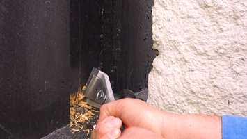 Bruk en malingsskrape til tre for å fjerne løs maling og løst treverk.