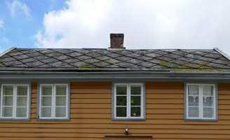 <b>MOSE:</b> Det gror høyt på taket og er lett å overse.
