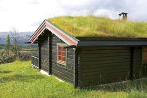 I solveggen brytes beisen raskere ned enn på resten av hytta.