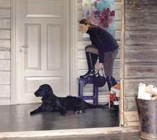 Fliser tåler at Fido legger seg i gangen også etter en rengværstur.
