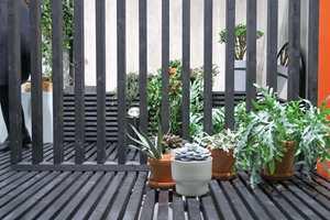 <b>TERRACOTTA:</b> Terracottapottene var hyppig vist fram med grønne planter.