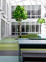 <b>GLASSOVERBYGGET ATRIUM:</b> Skolen har sin egen oase der overlyset, gulvbelegg og fargerike trær danner et grønt landskap og en avslappende atmosfære.