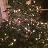 <b>JULEFARGER:</b> Treet hjemme hos Tale Henningsen er klassisk pyntet med hvitt, gull og rødt.