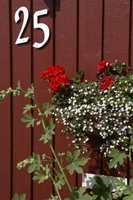 Malesesongen utendørs er ikke over før det regner konstant, og temperaturen er under 5 grader. (foto: Nordsjö)