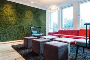 <b>EC DAHL:</b> Hos eiendomsselskapet EC Dahl i Trondheim har de levende mose på veggen. En levende lyddemper og spire til naturopplevelse.