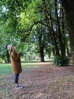 <b>STILLE:</b> Det virker positivt på både humør, helse og søvn å bevege seg ut blant trær, og poenget er å gjøre det sakte og puste inn atmosfæren.