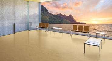 Noraplan Valua – den nye gummigulvløsningen fra Nora Systems – er sterkt inspirert av naturen, og forener den gode hjemmefølelsen med funksjonalitet.