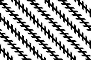 Du blir bedratt optisk: De diagonale linjene ER parallelle. (Illustrasjonen er hentet fra Store Norske Leksikon).