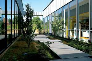 Skolen er en én-etasjes glasspaviljong. Glassfasadene gir rikelig med lys inn, og utsikt til grønne lunger mellom bygningskroppene.