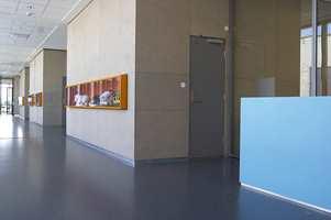 Dekorative fargeinnslag gir liv til nødvendige gangarealer mellom klasserommene.