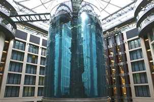 Akvariet er 25 meter høyt og kan ses fra mange av hotellets rom.