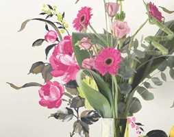 Her er tapeter for noen og enhver, med friske farger, akvareller, fugler og blomster.