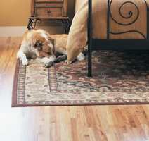 Det er godt å ligge av gulvet når gulvet er av kork.