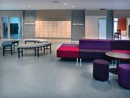 Linoleum Veneto er gulv i den nye kolleksjonen.