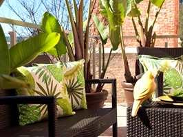 Fyldige puter med frodige blader hjelper til å skape en «grønn» hagestue. Tropical Vibes collection fra Aldeco føres av Green Apple.