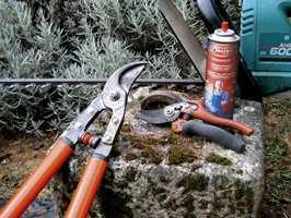 Sett inn hageverktøyet med en smørende olje, så går jobben lettere.