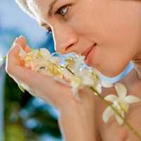 Den sanselige forbuker søker sterke stimuli og sanselige opplevelser.