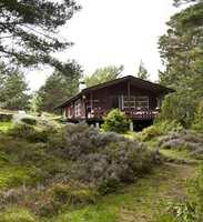 Hytta ligger idyllisk til, kun 250 meter fra vannet og omkranset av skog og lyng.