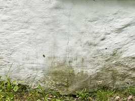 <b>UVELKOMMEN: </b>Alger og annen grønske gjør den hvite grunnmuren stripete og stygg.