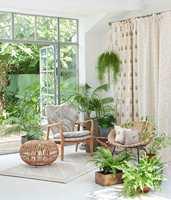 <b>OASE:</b>Tekstilene må ikke være fargerike og spreke for å gi sommerstemning. Med noen lyse, lette tekstiler og grønne planter kan du skape din egen oase. Her er tekstiler fra Borge sin kolleksjon Botanica.